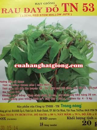 Hạt giống rau đay đỏ_TN53