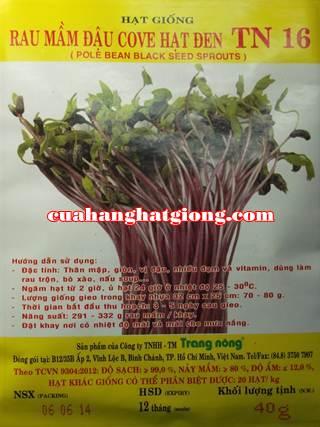 hạt giống rau mầm đậu cove hạt đen_TN16