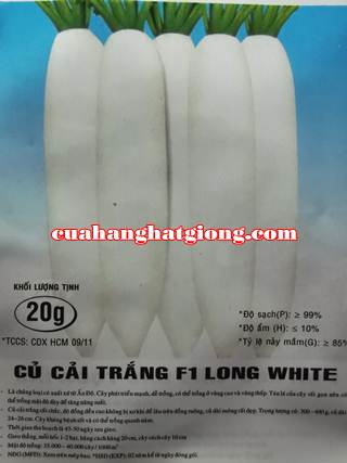 Hạt giống củ cải trắng F1 Long White