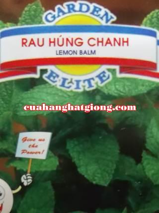 Hạt Giống Rau Húng Chanh