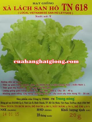 Hạt giống xà lách san hô (xà lách xoăn)_TN618