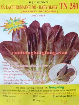 Hạt giống xà lách Romane đỏ (baby mary) _TN280