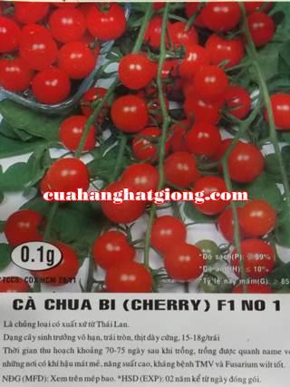 Hạt giống cà chua bi cherry F1