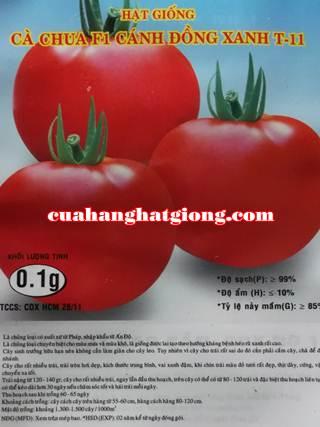 Hạt giống cà chua F1_T11