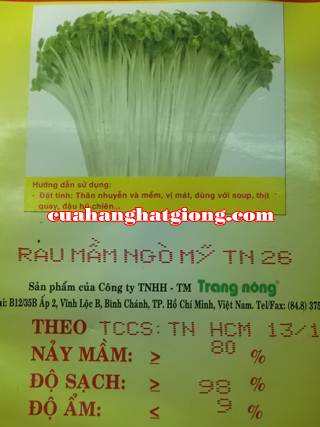 hạt giống rau mầm ngò mỹ_TN26