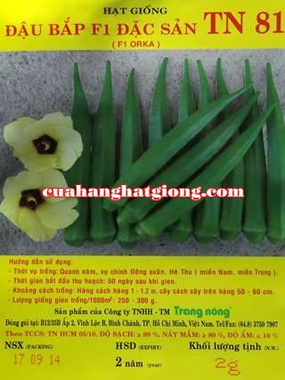 Hạt giống đậu bắp_TN81