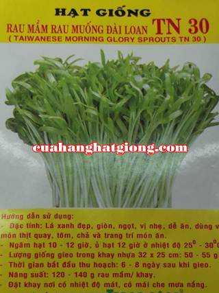Hạt giống rau mầm rau muống đài loan_TN30